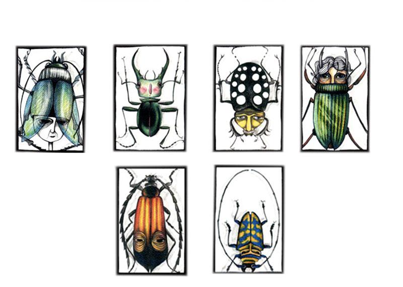 metamorfos-insetti